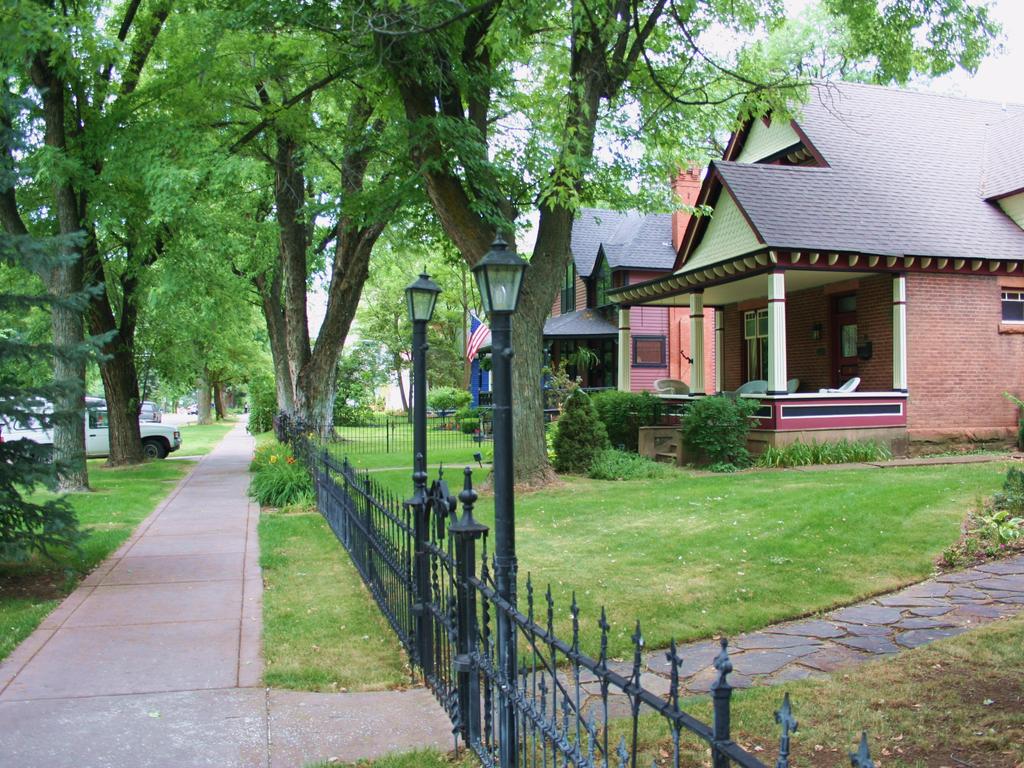 tree-lined-neighborhood-colorado
